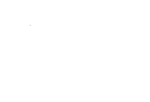 Dorset Chimney Sweep
